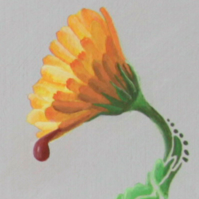 Painting called Calendula Officinalis Linn, about the use and medicinal powers of the Marigold. Made by Veerle Ritstier