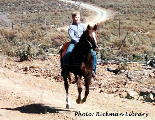 horses, Spanish Mustangs, Mustangs, SE Oklahoma, Blackjack Mountain, Rickman