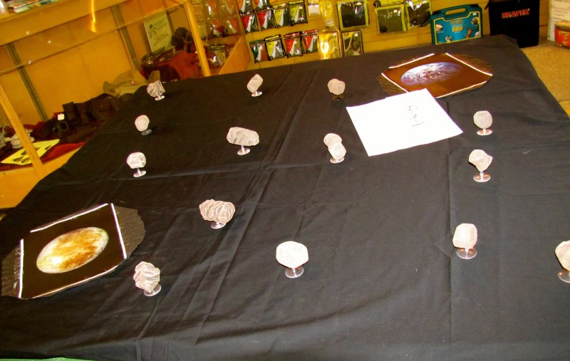 An asteroid field for X-Wing. The game involved some chocolate spacecraft.