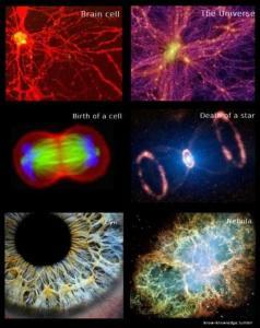 body-universe