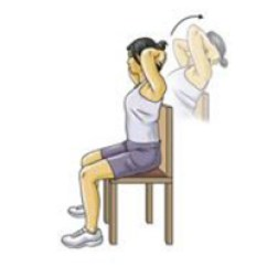 Chair Stand Exercise Christmas Covers Upper Back Strain Exercises New York | Neck
