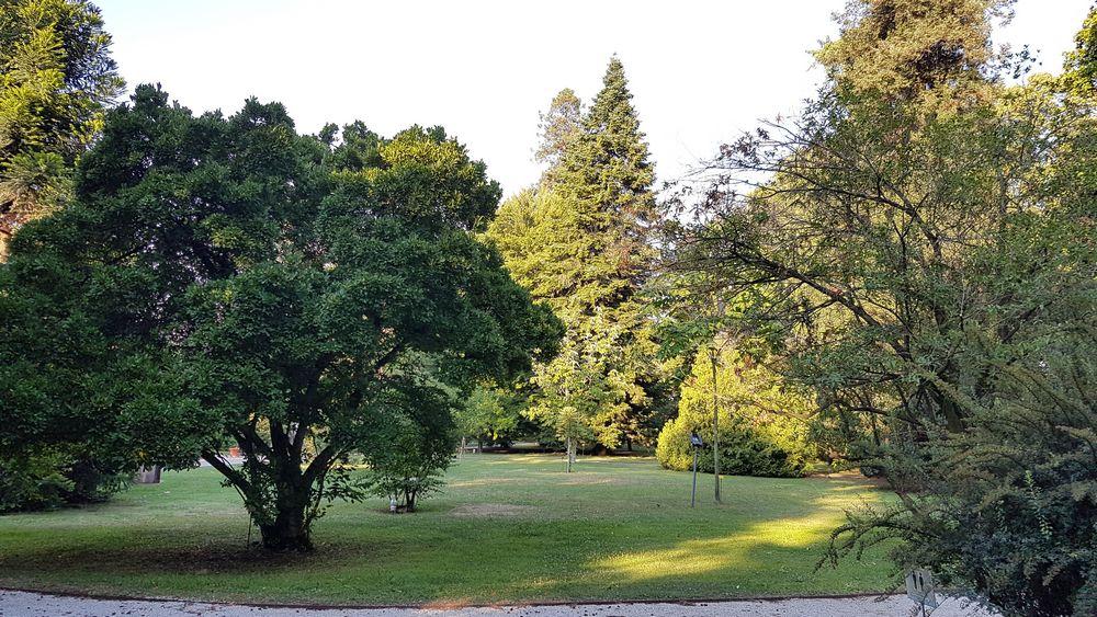 giardino botanico di lucca