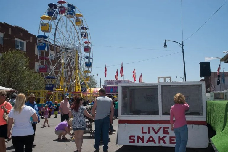 This was basically a carnival with a box of snakes.