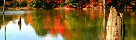 Alum Creek State Park Delaware, Ohio