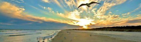 Huntington Beach State Park Murrells Inlet, South Carolina