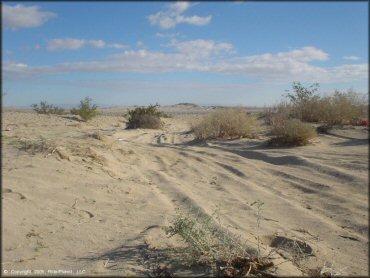 ocotillo wells svra - california