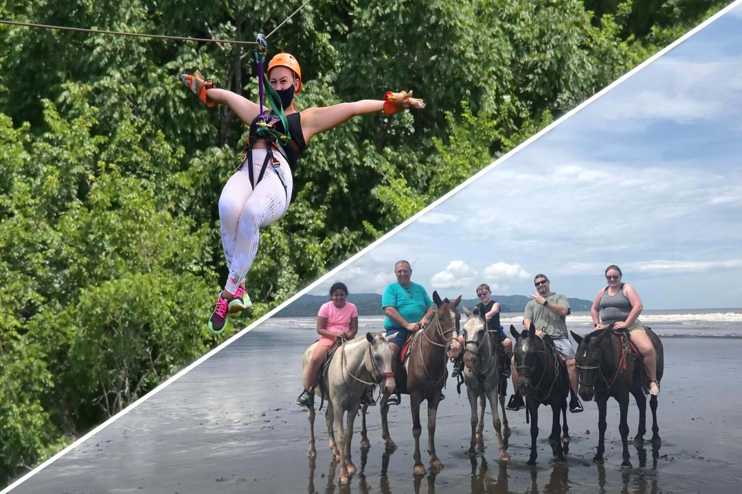 Horse and Canopy Tour