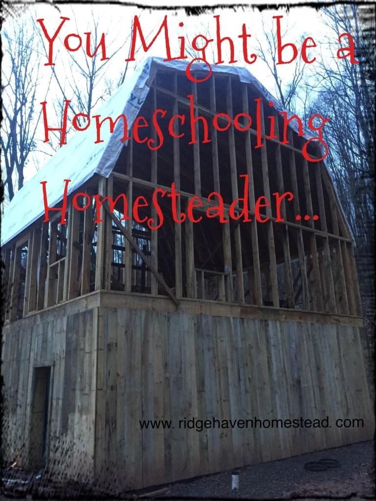 Homesteading homeschooling