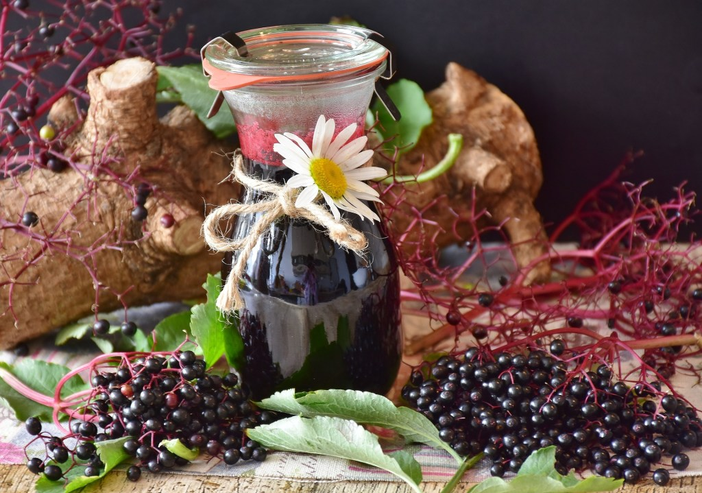 Elderberry Immune Syrup as natural remedy for cold and flu