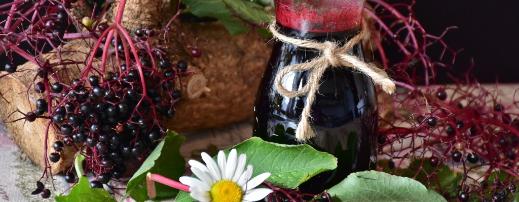 elderberry immune syrup recipe