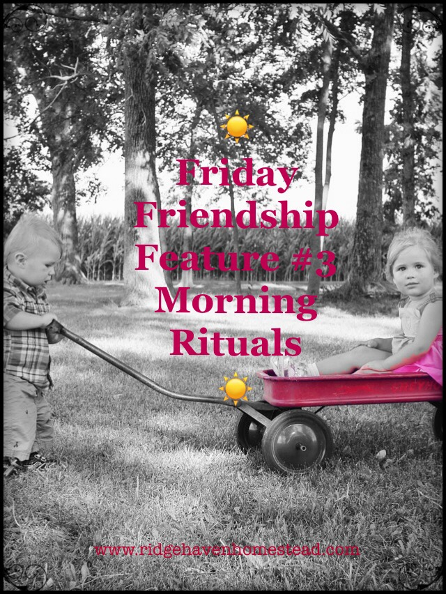 Friday  Friendship  Feature #3