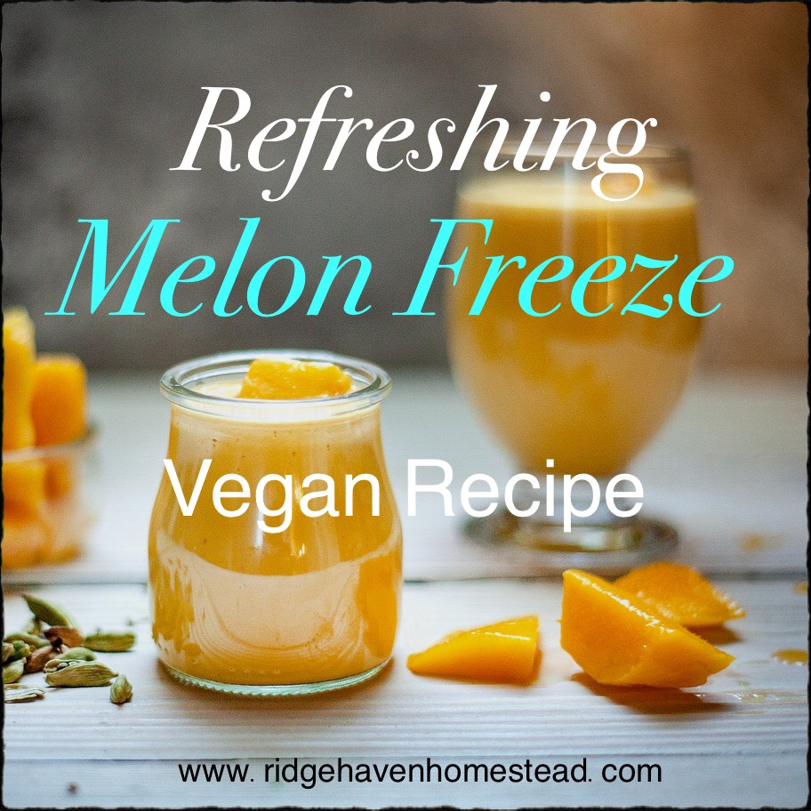 Refreshing Melon Freeze