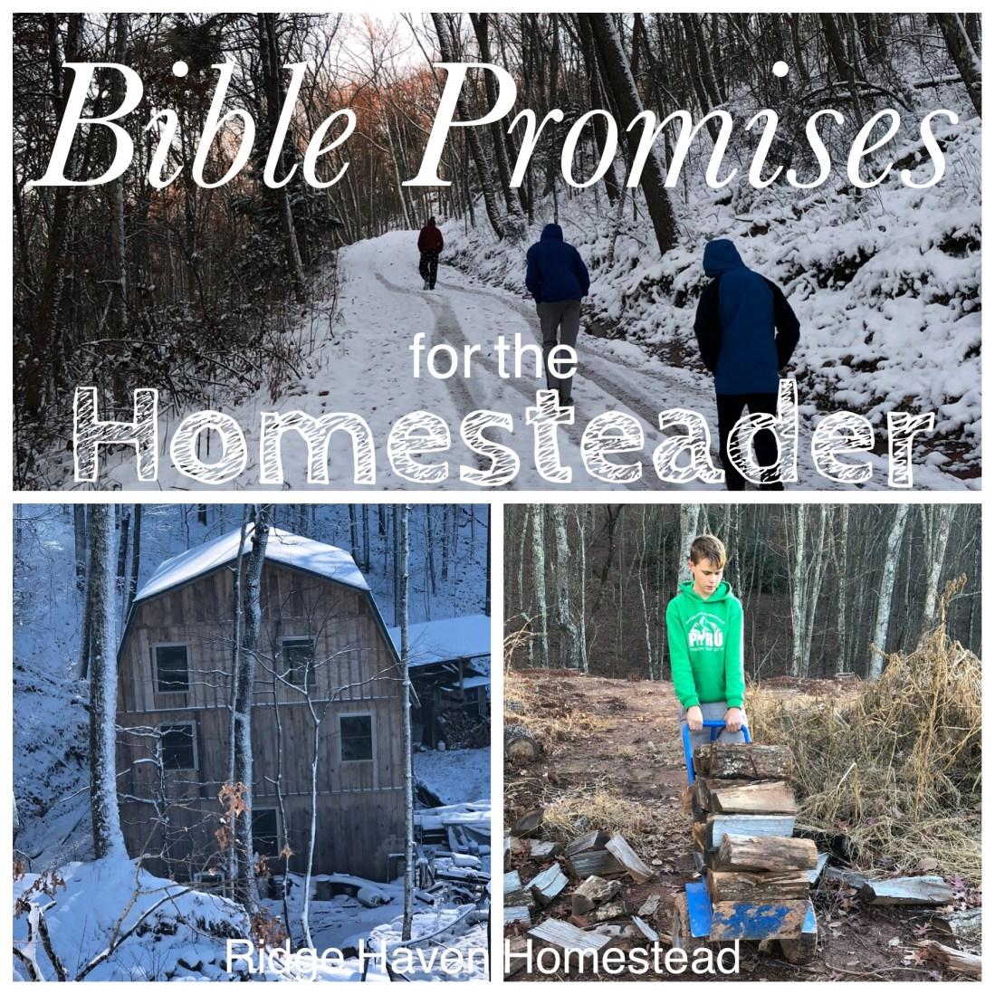 Bible promises homesteader