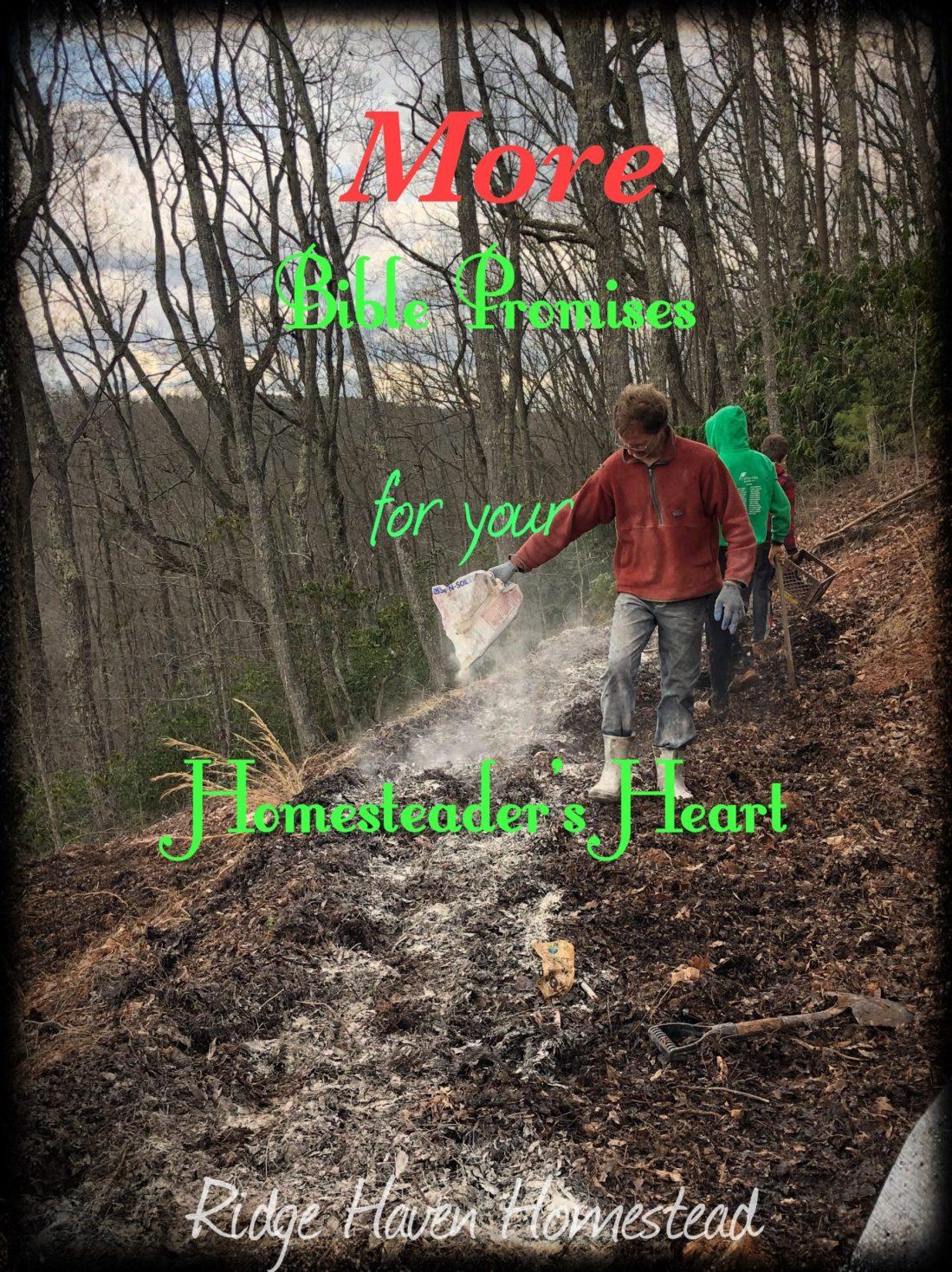 Bible promises for the homesteader's heart