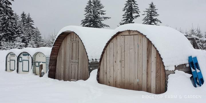 Chicken Hut snow