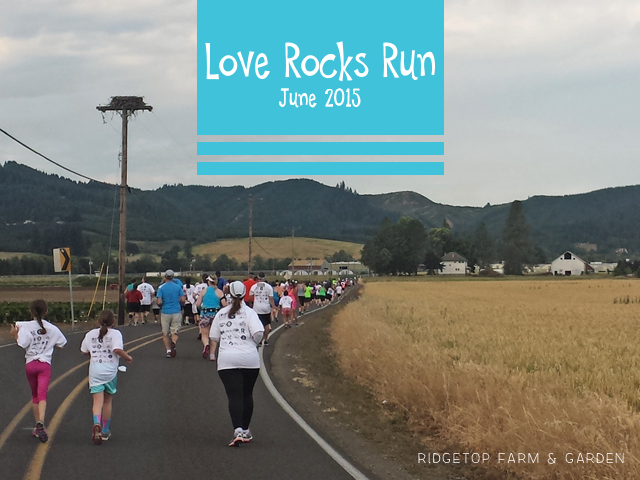 Love Rocks Run title