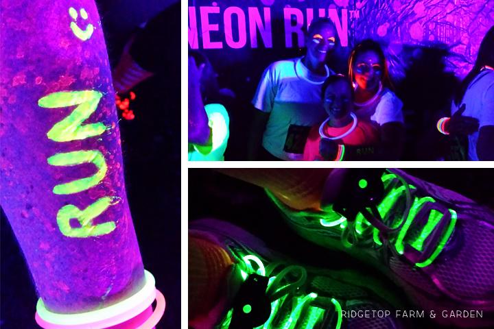 Neon Run Oct2013 2