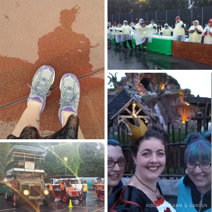 Neverland 5k May2015 rain