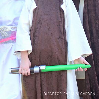 Handmade Star Wars Costumes