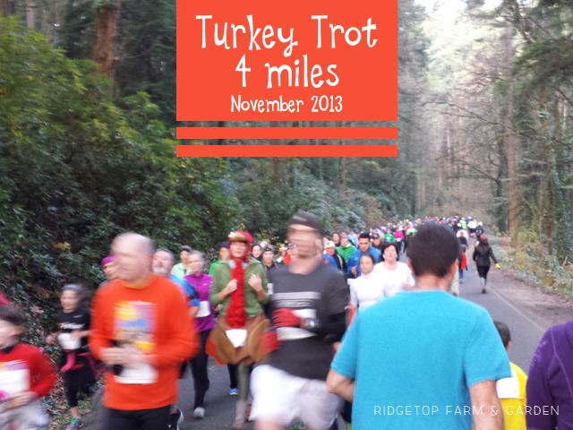 Turkey Trot Nov 2013 race recap Portland OR