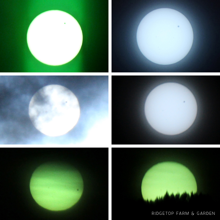 Venus Transit 5