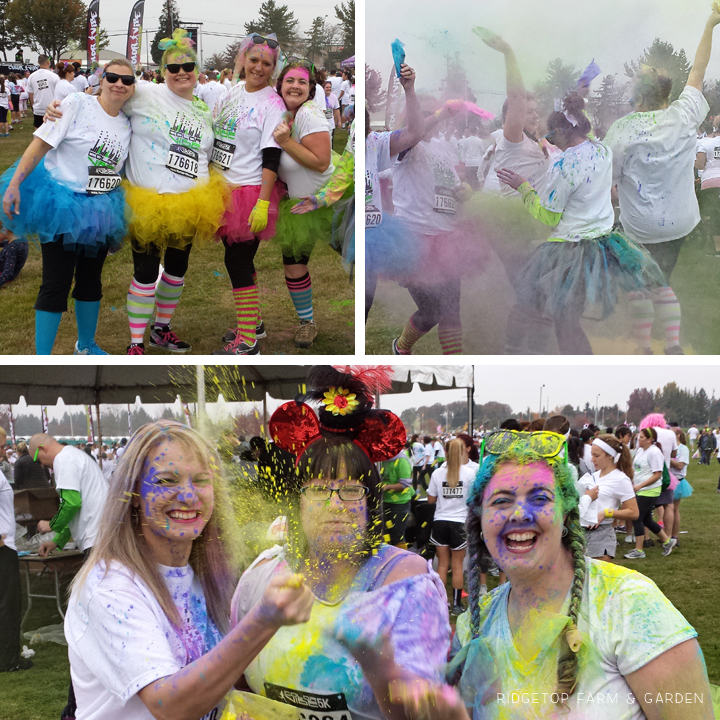 color vibe oct2013 2