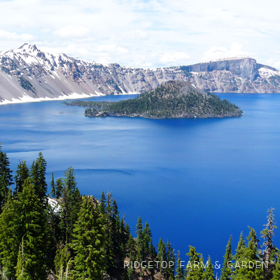31 Days in Oregon: Crater Lake