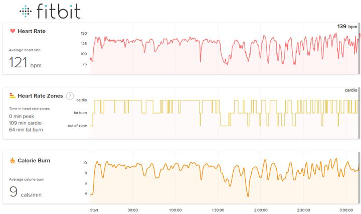 2015 Race Recap | Rock n Roll Las Vegas Half Marathon | FitBit