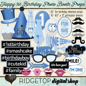 Ridgetop Digital Shop | Photo Booth Props | 1st Birthday | Boy | Silver | Blue