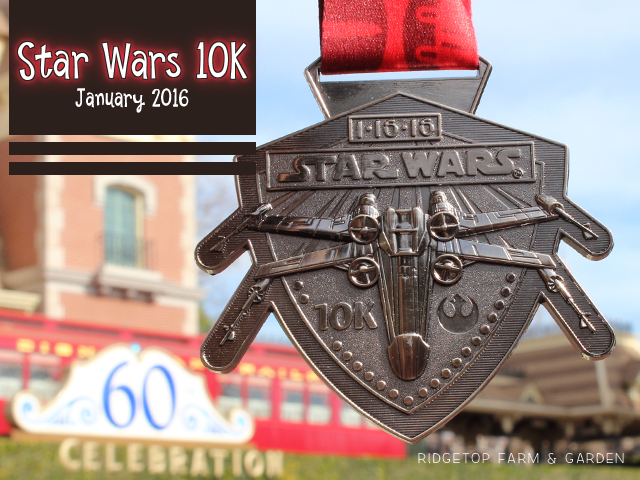 Ridgetop Farm and Garden | Race Recap | Star Wars 10K | Rebel Challenge | Disneyland