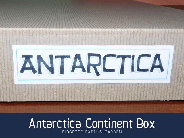 Ridgetop Farm and Garden | Continent Boxes | Antarctica