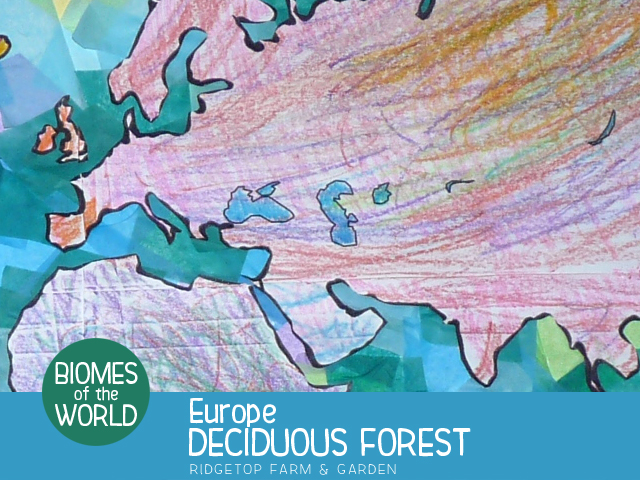 Ridgetop Farm and Garden | Biomes of the World | Europe | Deciduous Forest