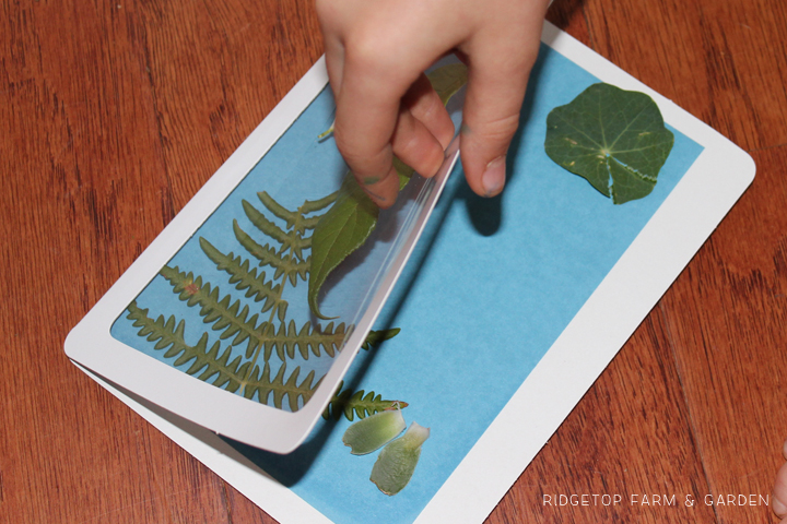 Ridgetop Farm and Garden | Solar Paper