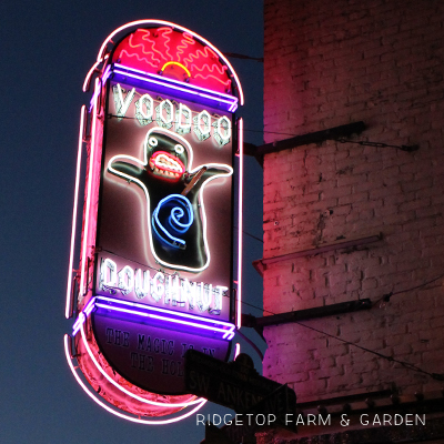 31 Days in Oregon: Voodoo Doughnut