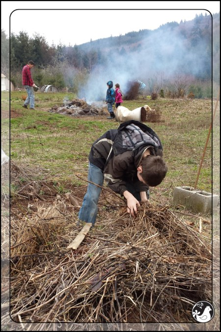 Ridgetop Farm and Garden | February 2014 Update