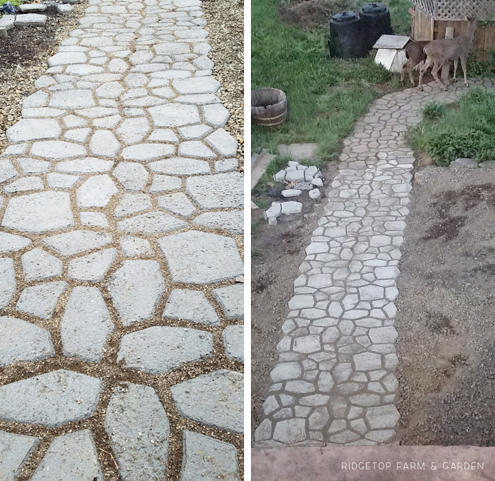 Ridgetop Farm and Garden | DIY Concrete Path |Walkmaker Form