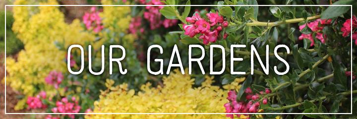 Ridgetop Farm and Garden | Flower Gardens | Our Gardens