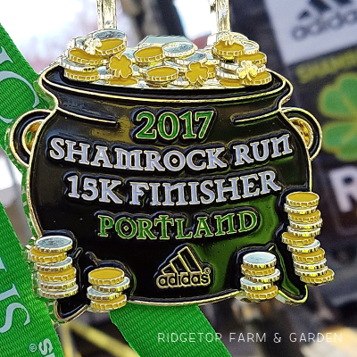 2017 Race Recap – Shamrock Run 15K
