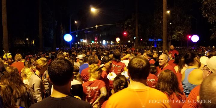 Ridgetop Runner | 2017 Race Recap | Disneyland 5K