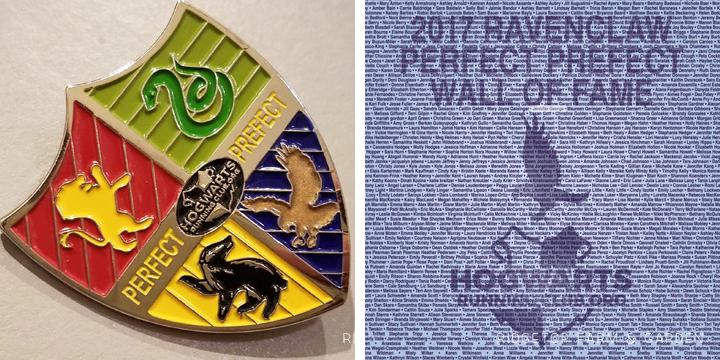 Ridgetop Runner | 2017 Race Recap | Hogwarts Running Club | Perfect Prefect