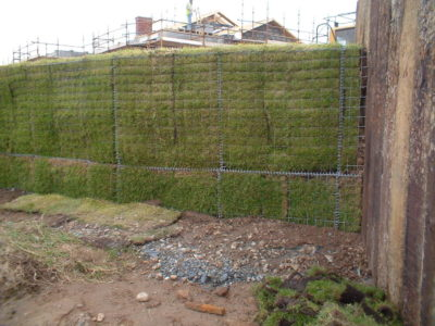 A membrane can be applied to the Gabion to allow for vegetation fronts.