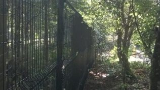 Fencing Installation at World of Owls