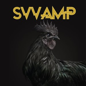 SVVAMP-SVVAMP-RE-RECORDS