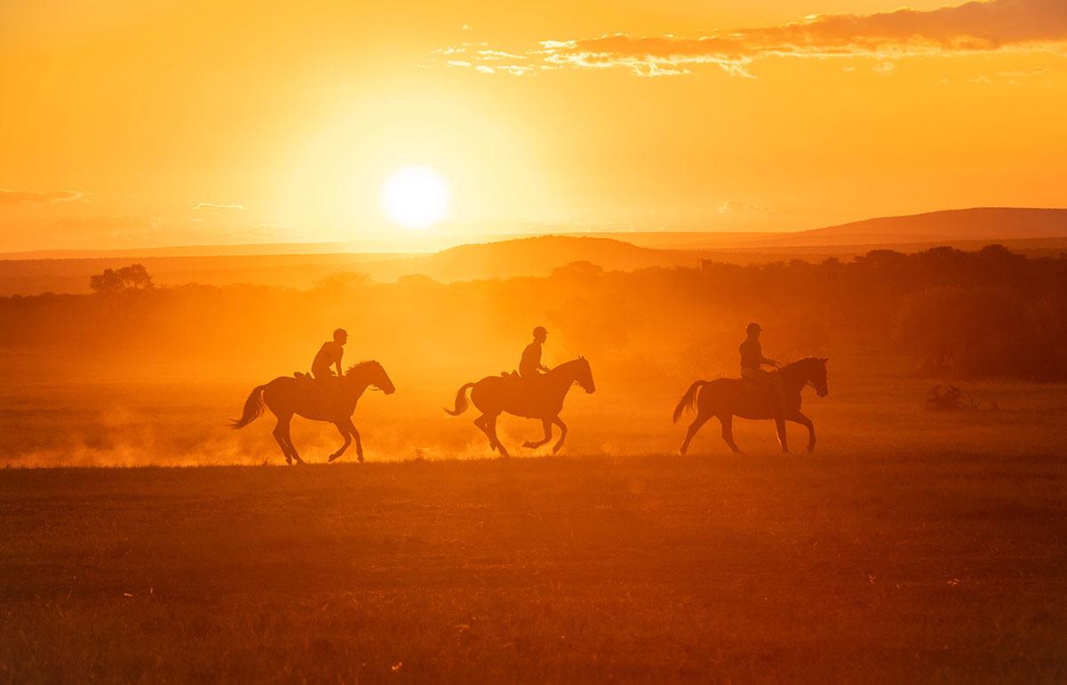 Family horseback safari