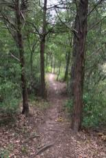 McKinney Roughs Loop