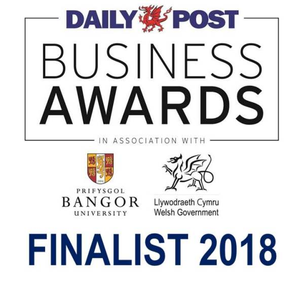 finalist logo for daily post business awards 2018