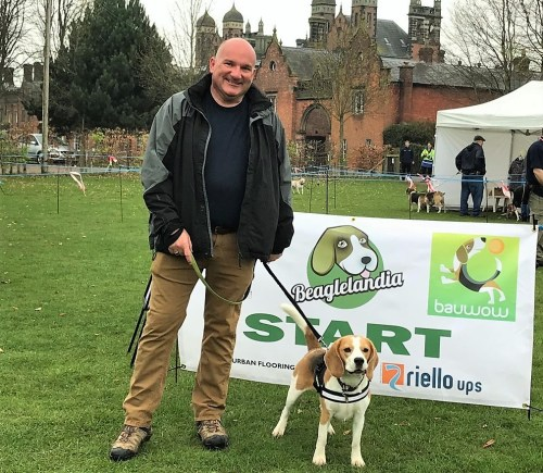 Leo Craig Riello UPS with beagle Ziggy Beaglelandia beagle world record 2 at Capesthorne Hall