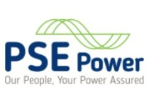 pse power ireland logo