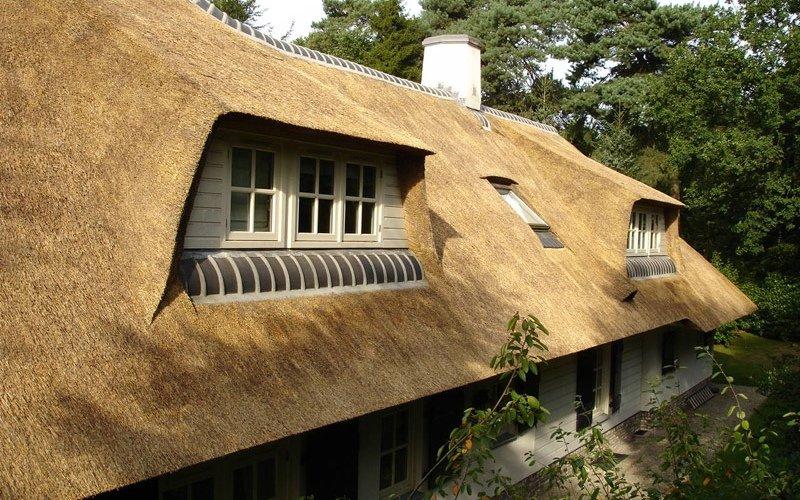 De voordelen en nadelen van een rieten dak  Riet