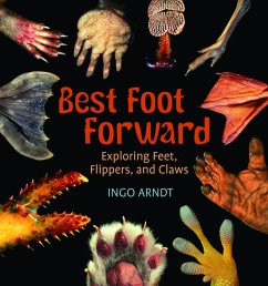 Best Foot Forward: Exploring Feet [ 882 x 900 Pixel ]